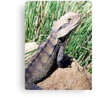 Aye, there be Dragons! Canvas Print
