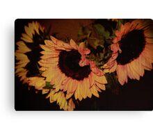 Sunflower Texture Canvas Print