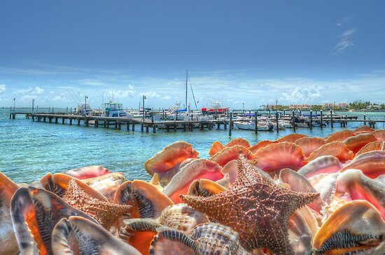 Marina at Montagu Beach in Nassau, The Bahamas by 242Digital