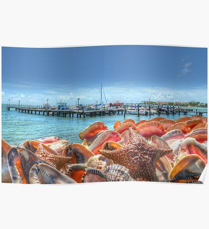 Marina at Montagu Beach in Nassau, The Bahamas Poster