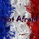 Not Afraid ~ 11/13/2015 by artisandelimage