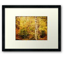 The Woodland Framed Print