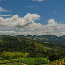 Tea Country by M-A-K