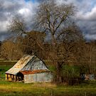 Beerenberg, Hahndorf, Adelaide Hills by Mark Richards