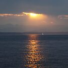 Sunset over Puget Sound by Olga Zvereva