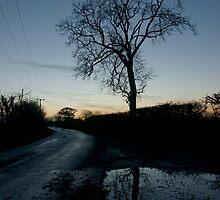 Holme Fen Drove, November, dusk by Martin Harradine