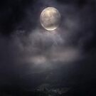 Moonlit Night by Serdd