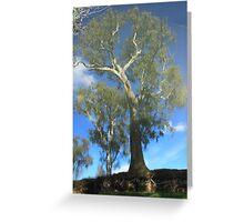 Goulburn Dreaming Greeting Card