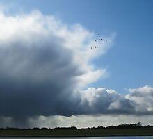 Summer storm by Martin Harradine