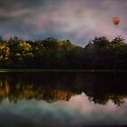 Balloon Ride by Judi Taylor