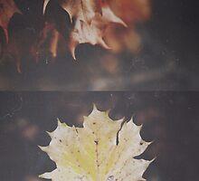 Seasonal Wilt by christinevanfon