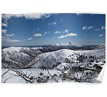 Mt. Feathertop Poster