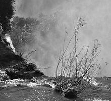 iguazu falls by paul mcgreal
