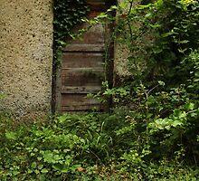 secret doors 3 by Nikolay Semyonov