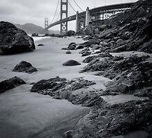 Algae San Fran B&W by jswolfphoto