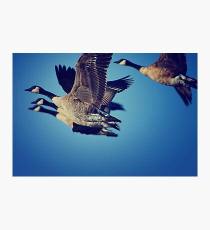 Squadron Photographic Print