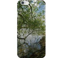 Willow Pattern iPhone Case/Skin