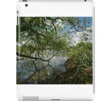 Willow Pattern iPad Case/Skin