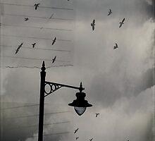 Shadow Journal by Nicola Smith