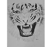 Tiger #1 Photographic Print