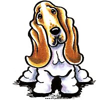 Basset Hound Sit Stay Photographic Print