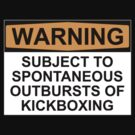 WARNING: SUBJECT TO SPONTANEOUS OUTBURSTS OF KICKBOXING by Bundjum