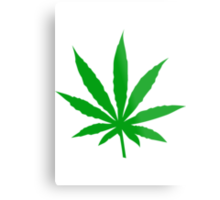 Marijuana Leaf Metal Print