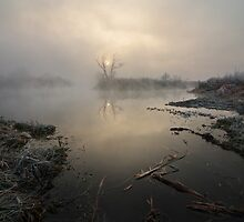Fog upon river by Stanislav Salamanov