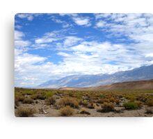 Desertscape Canvas Print