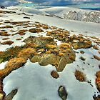 Winter snow near Mt. Nelse by Kevin McGennan