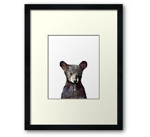 Little Bear Framed Print