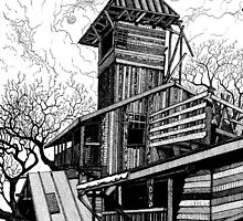 TREE HOUSE by Steven Shand