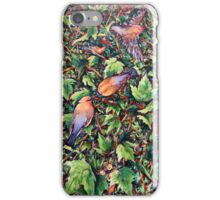 Bird's Eye View iPhone Case/Skin