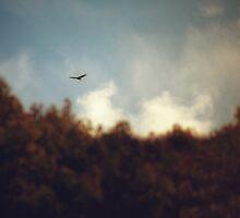 Misty Mountain Hop by Christopher Burton