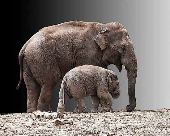 Mother and baby by Sheila Laurens