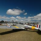 Three Chipmunks @ Caboolture Fly-In, Queensland 2011 by muz2142