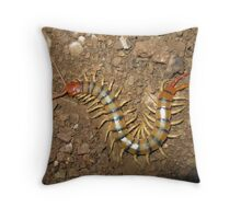 Centipede in Mayer, Arizona Throw Pillow