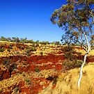 Karajini National Park by georgieboy98