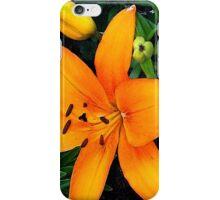 Orange Asiatic Lily iPhone Case/Skin