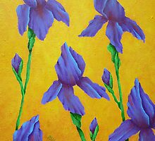 Purple Iris by Allegretto