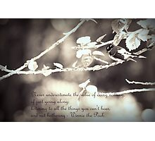 Wise Words from Winnie the Pooh... Photographic Print