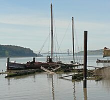 Derelict boats on the Benicia waterfront by Martha Sherman