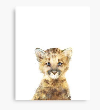 Little Mountain Lion Canvas Print