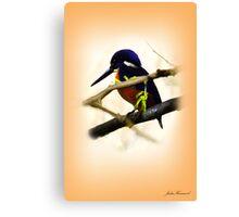 Blue Kingfisher Canvas Print