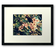September Afternoon Framed Print