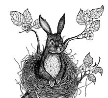 BUNNY IN NEST  by Steven Shand