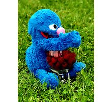 Selfish Grover Photographic Print