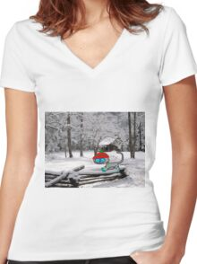 Cat On Snowy Fence Women's Fitted V-Neck T-Shirt