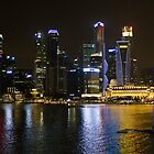 Wonders of Singapore by ashishagarwal74