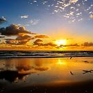 Surfers Paradise Sunrise by Tracie Louise